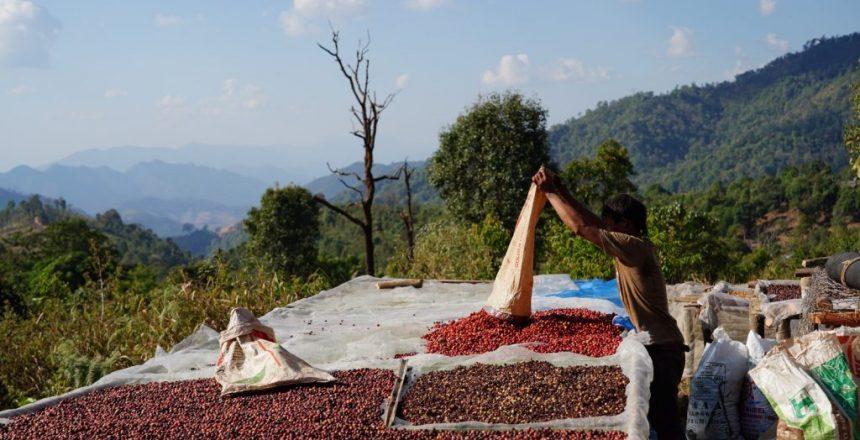 Q&A with Dustin Joseph on Community-Driven Thai Coffee